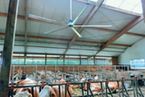 Plafondventilator Abbi PV 4000-E _