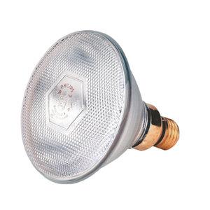 Warmtelamp Philips 100 watt wit